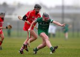 REPRO FREE***PRESS RELEASE NO REPRODUCTION FEE*** Irish Daily Star National League Round 1 Group 2, Mick Neville Park, Rathkeale, Co. Limerick 21/2/2016 Limerick vs Cork Limerick's Sarah Carey and Orla Cotter of Cork Mandatory Credit ©INPHO/Ryan Byrne